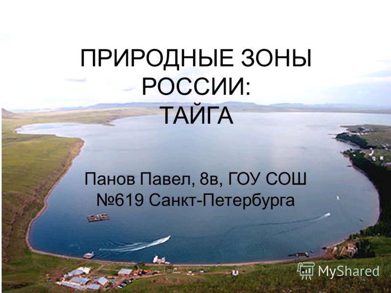 ПРИРОДНЫЕ ЗОНЫ РОССИИ: ТАЙГА Панов Павел, 8в, ГОУ СОШ 619 Санкт-Петербурга