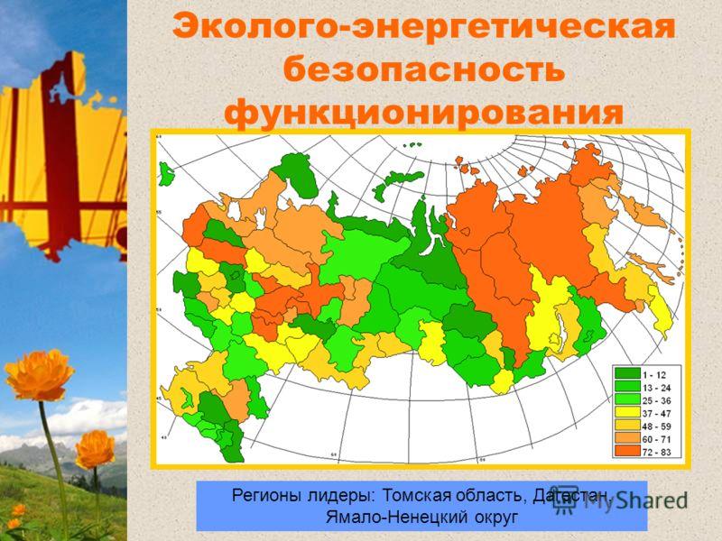 Регионы лидеры: Томская область, Дагестан, Ямало-Ненецкий округ Регионы лидеры Эколого-энергетическая безопасность функционирования региональной экономики