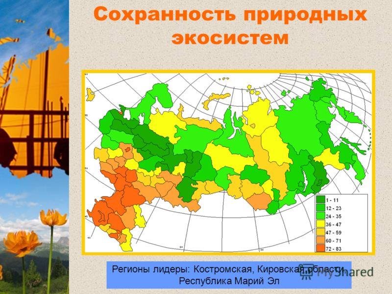Регионы лидеры: Костромская, Кировская области, Республика Марий Эл Регионы лидеры Сохранность природных экосистем