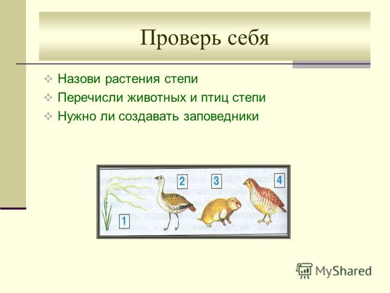 Проверь себя Назови растения степи Перечисли животных и птиц степи Нужно ли создавать заповедники