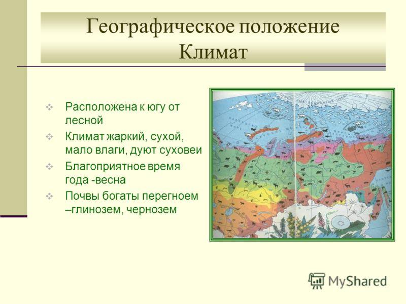 Географическое положение Климат Расположена к югу от лесной Климат жаркий, сухой, мало влаги, дуют суховеи Благоприятное время года -весна Почвы богаты перегноем –глинозем, чернозем