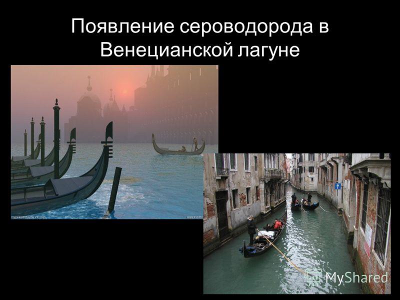 Появление сероводорода в Венецианской лагуне
