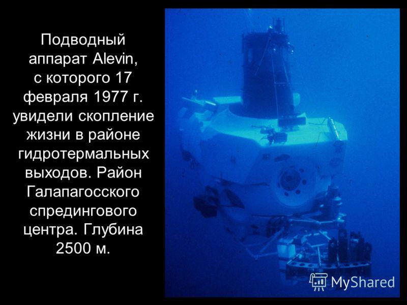 Подводный аппарат Alevin, с которого 17 февраля 1977 г. увидели скопление жизни в районе гидротермальных выходов. Район Галапагосского спредингового центра. Глубина 2500 м.