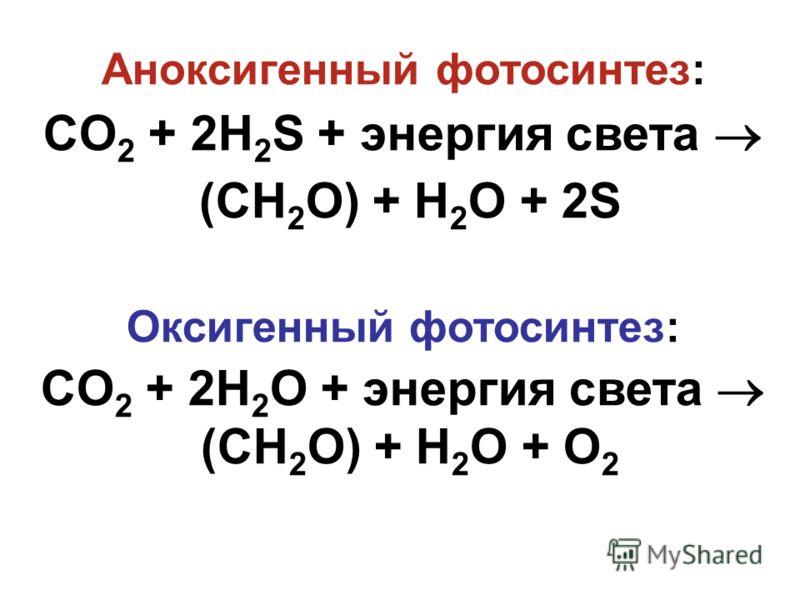 Аноксигенный фотосинтез: CO 2 + 2H 2 S + энергия света (CH 2 O) + H 2 O + 2S Оксигенный фотосинтез: CO 2 + 2H 2 O + энергия света (CH 2 O) + H 2 O + O 2