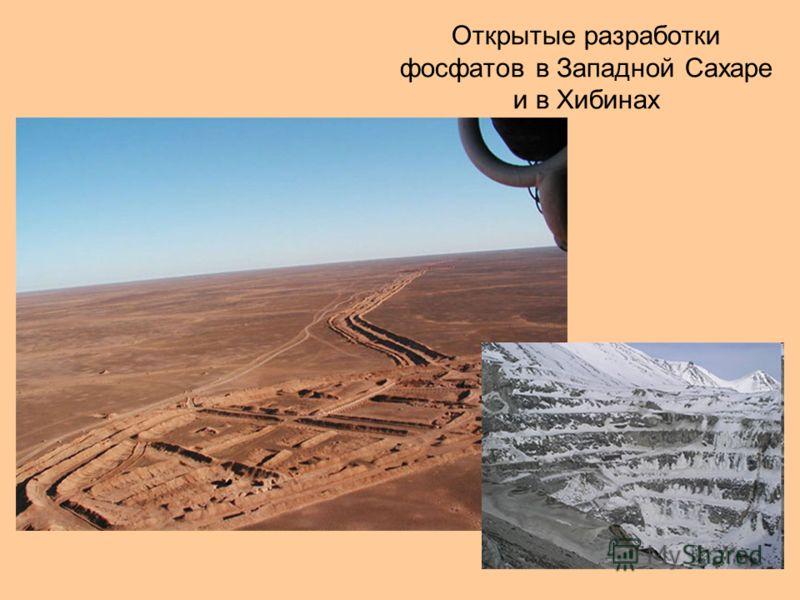 Открытые разработки фосфатов в Западной Сахаре и в Хибинах