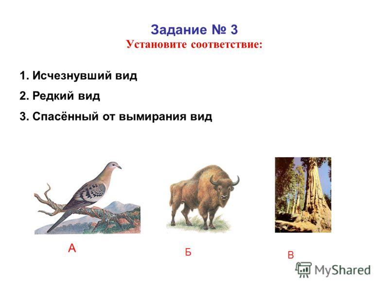 Задание 3 Установите соответствие: 1. Исчезнувший вид 2. Редкий вид 3. Спасённый от вымирания вид А Б В