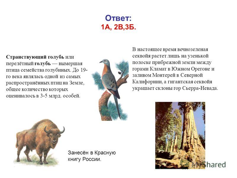 Ответ: 1А, 2В,3Б. 14 Странствующий голубь или перелётный голубь вымершая птица семейства голубиных. До 19- го века являлась одной из самых распространённых птиц на Земле, общее количество которых оценивалось в 3-5 млрд. особей. Занесён в Красную книг