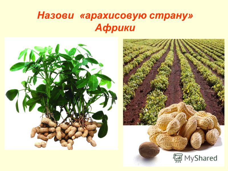 Назови «арахисовую страну» Африки