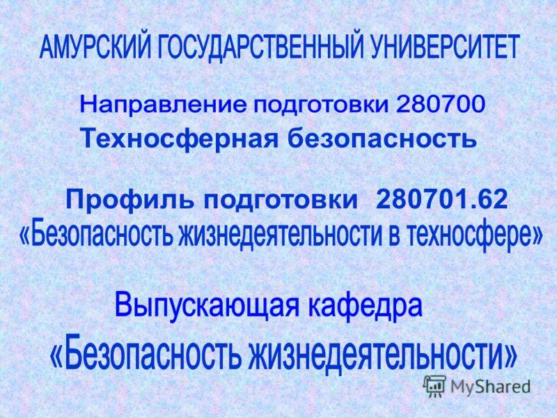 Техносферная безопасность Профиль подготовки 280701.62