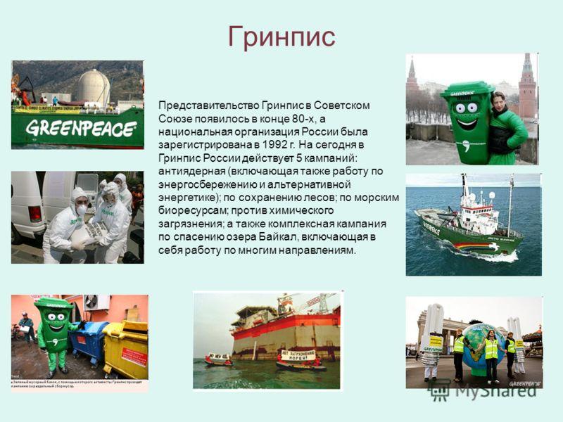 Гринпис Представительство Гринпис в Советском Союзе появилось в конце 80-х, а национальная организация России была зарегистрирована в 1992 г. На сегодня в Гринпис России действует 5 кампаний: антиядерная (включающая также работу по энергосбережению и