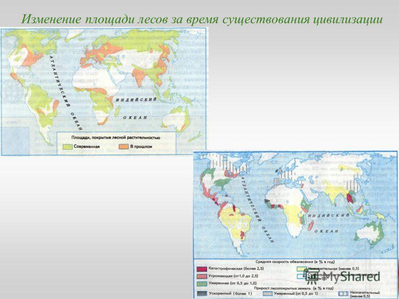 Изменение площади лесов за время существования цивилизации