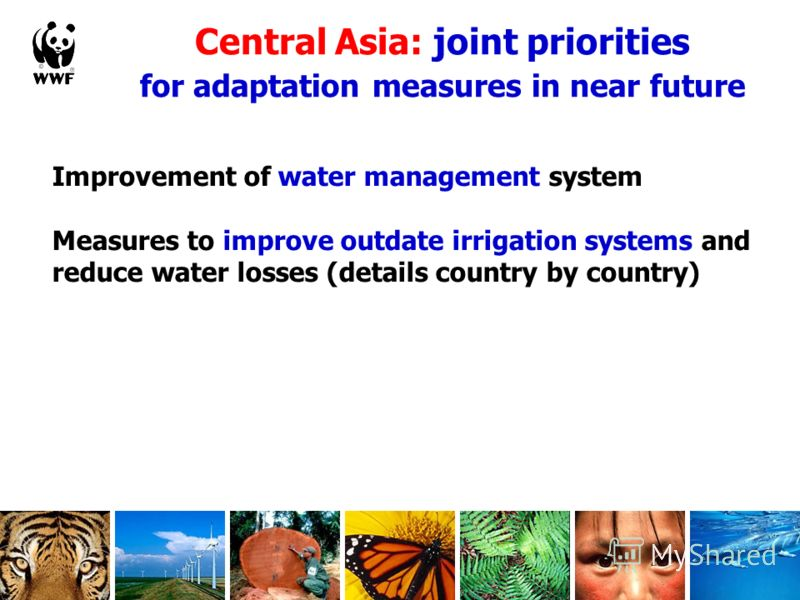 Central Asia: joint priorities for adaptation measures in near future Improvement of water management system Measures to improve outdate irrigation systems and reduce water losses (details country by country)