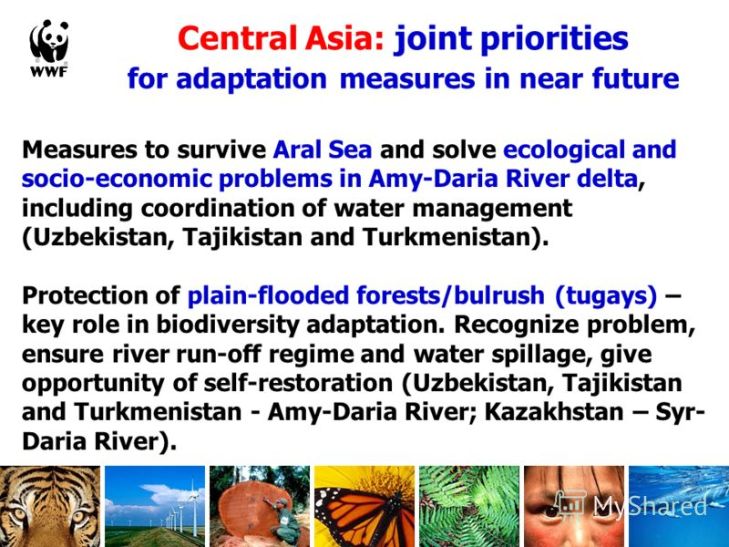 Central Asia: joint priorities for adaptation measures in near future Measures to survive Aral Sea and solve ecological and socio-economic problems in Amy-Daria River delta, including coordination of water management (Uzbekistan, Tajikistan and Turkm