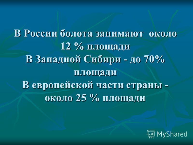 В России болота занимают около 12 % площади В Западной Сибири - до 70% площади В европейской части страны - около 25 % площади
