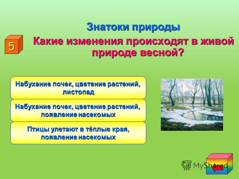 Знатоки природы Назовите весенние месяцы Март, апрель, май Апрель, май, июнь Март, февраль, май 4