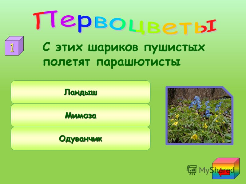 Экология 23456 23456 23456 23456Знатоки природы природы 23456«Зелёнаяаптека» Пернатыедрузья Первоцветы 1 1 1 1 1