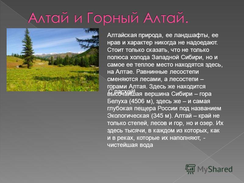 Алтайская природа, ее ландшафты, ее нрав и характер никогда не надоедают. Стоит только сказать, что не только полюса холода Западной Сибири, но и самое ее теплое место находятся здесь, на Алтае. Равнинные лесостепи сменяются лесами, а лесостепи – гор