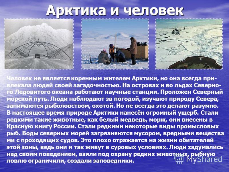 Доклад человек и арктика 1323