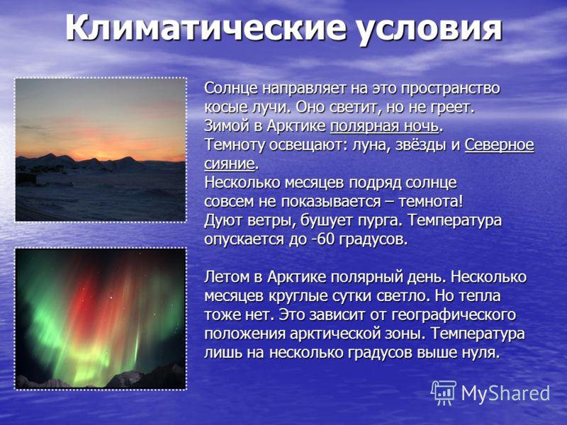 Арктикf доклад 4 класс