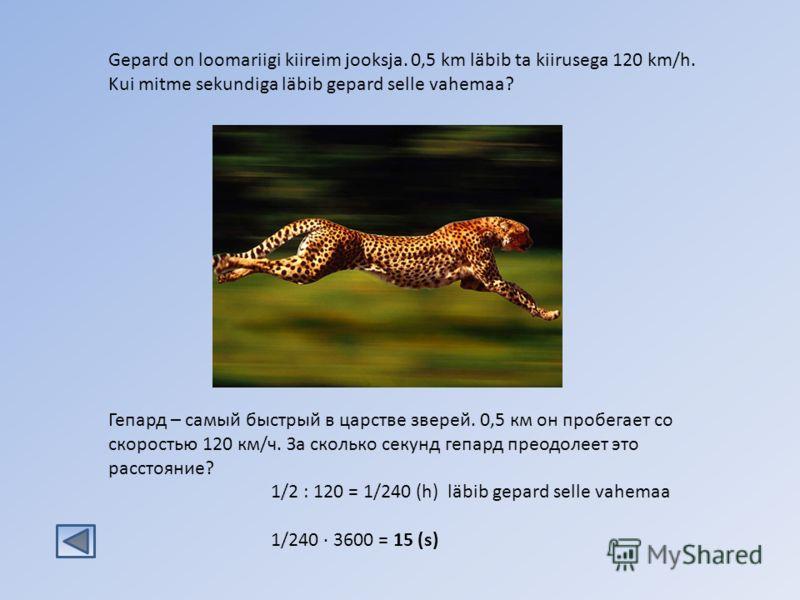 1/2 : 120 = 1/240 (h) läbib gepard selle vahemaa 1/240 · 3600 = 15 (s) Gepard on loomariigi kiireim jooksja. 0,5 km läbib ta kiirusega 120 km/h. Kui mitme sekundiga läbib gepard selle vahemaa? Гепард – самый быстрый в царстве зверей. 0,5 км он пробег