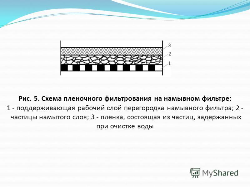 Рис. 5. Схема пленочного фильтрования на намывном фильтре: 1 - поддерживающая рабочий слой перегородка намывного фильтра; 2 - частицы намытого слоя; 3 - пленка, состоящая из частиц, задержанных при очистке воды
