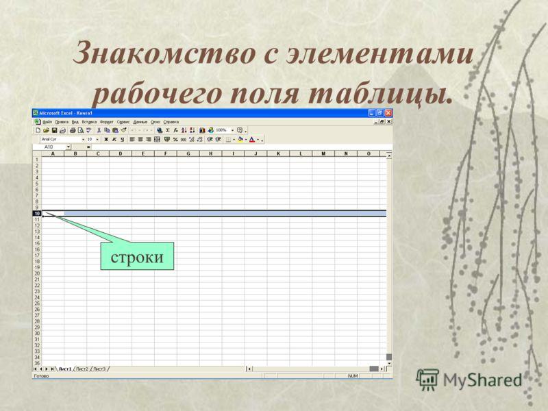 Знакомство с элементами рабочего поля таблицы. строки