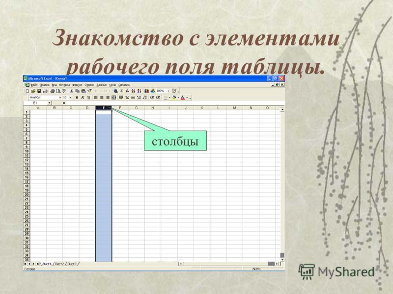 Знакомство с элементами рабочего поля таблицы. столбцы