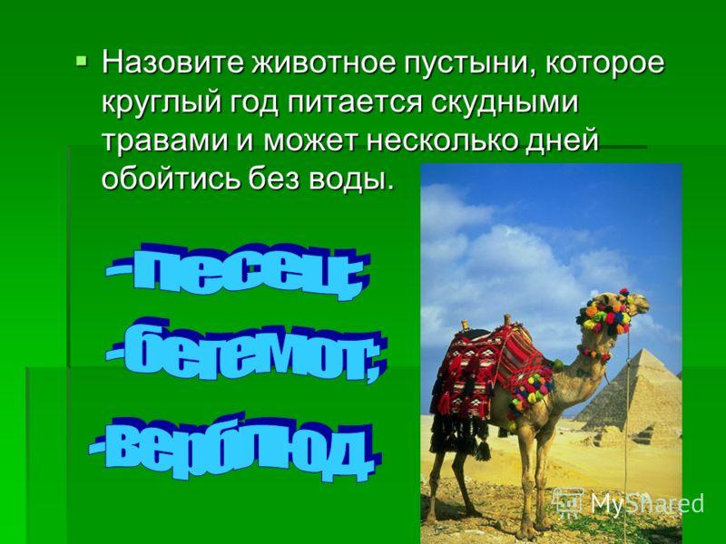 Назовите животное пустыни, которое круглый год питается скудными травами и может несколько дней обойтись без воды. Назовите животное пустыни, которое круглый год питается скудными травами и может несколько дней обойтись без воды.