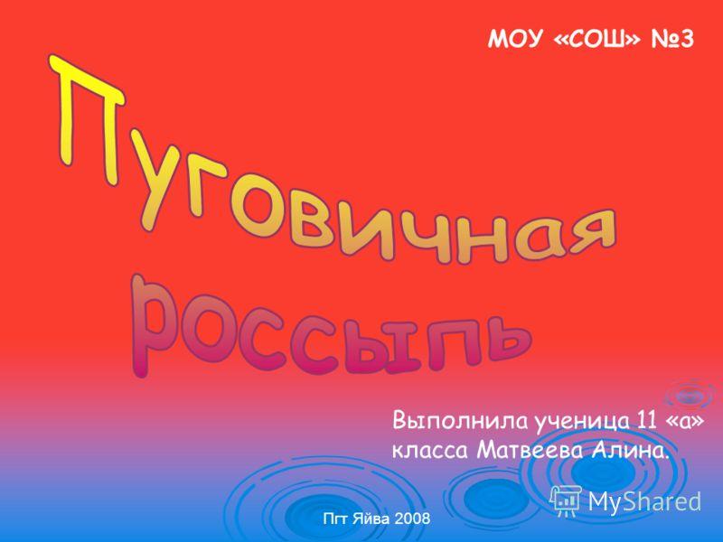 МОУ «СОШ» 3 Выполнила ученица 11 «а» класса Матвеева Алина. Пгт Яйва 2008