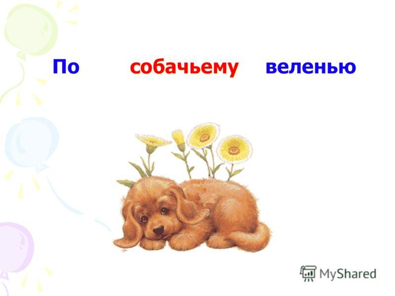 По собачьему веленью щучьему