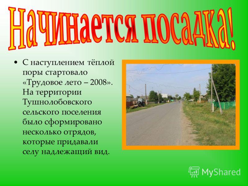 С наступлением тёплой поры стартовало «Трудовое лето – 2008». На территории Тушнолобовского сельского поселения было сформировано несколько отрядов, которые придавали селу надлежащий вид.