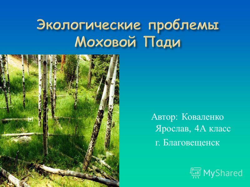 Автор: Коваленко Ярослав, 4А класс г. Благовещенск