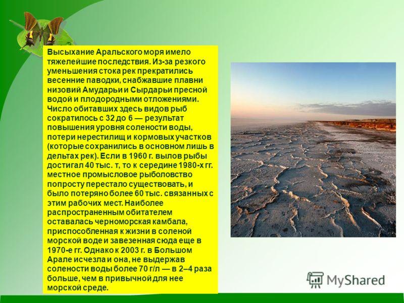 Высыхание Аральского моря имело тяжелейшие последствия. Из-за резкого уменьшения стока рек прекратились весенние паводки, снабжавшие плавни низовий Амударьи и Сырдарьи пресной водой и плодородными отложениями. Число обитавших здесь видов рыб сократил