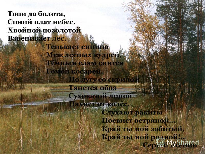 Топи да болота, Синий плат небес. Хвойной позолотой Взвенивает лес. Тенькает синица Меж лесных кудрей, Тёмным елям снится Гомон косарей. По лугу со скрипом Тянется обоз – Суховатой липой Пахнет от колёс. Слухают ракиты Посвист ветряной… Край ты мой з