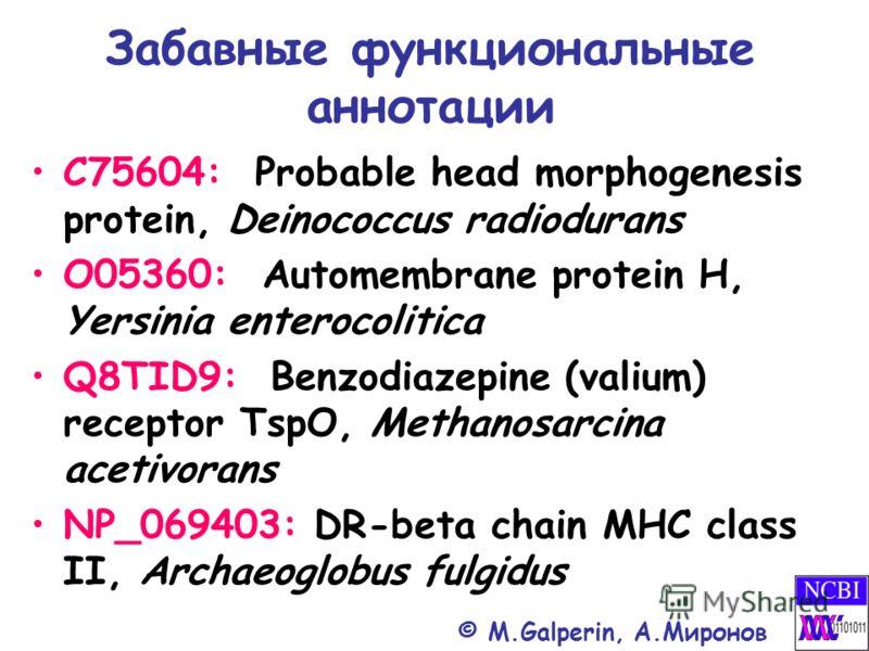 Забавные функциональные аннотации C75604: Probable head morphogenesis protein, Deinococcus radiodurans O05360: Automembrane protein H, Yersinia enterocolitica Q8TID9: Benzodiazepine (valium) receptor TspO, Methanosarcina acetivorans NP_069403: DR-bet