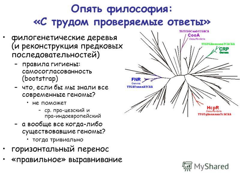 Опять философия: «С трудом проверяемые ответы» филогенетические деревья (и реконструкция предковых последовательностей) –правила гигиены: самосогласованность (bootstrap) –что, если бы мы знали все современные геномы? не поможет –ср. пра-цезский и пра