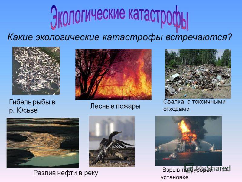 21 Разлив нефти в реку Гибель рыбы в р. Юсьве Лесные пожары Взрыв на буровой установке. Свалка с токсичными отходами Какие экологические катастрофы встречаются?