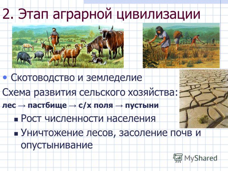 2. Этап аграрной цивилизации Скотоводство и земледелие Схема развития сельского хозяйства: лес пастбище с/х поля пустыни Рост численности населения Уничтожение лесов, засоление почв и опустынивание