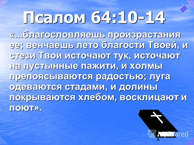 Псалом 64:10-14 «...благословляешь произрастания ее; венчаешь лето благости Твоей, и стези Твои источают тук, источают на пустынные пажити, и холмы препоясываются радостью; луга одеваются стадами, и долины покрываются хлебом, восклицают и поют».