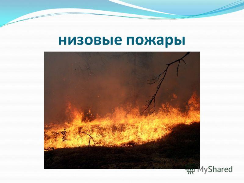Неосторожное обращение с огнем; Неосторожное обращение с огнем; Молнии; Молнии; Поджоги. Поджоги.