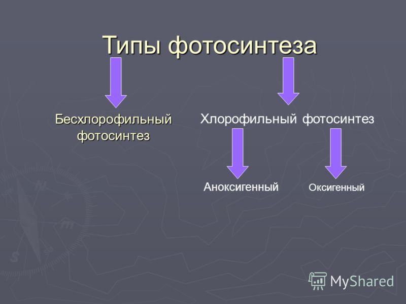 Бесхлорофильный фотосинтез Типы фотосинтеза Хлорофильный фотосинтез Аноксигенный Оксигенный