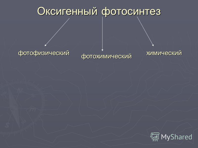 Оксигенный фотосинтез фотофизический фотохимический химический