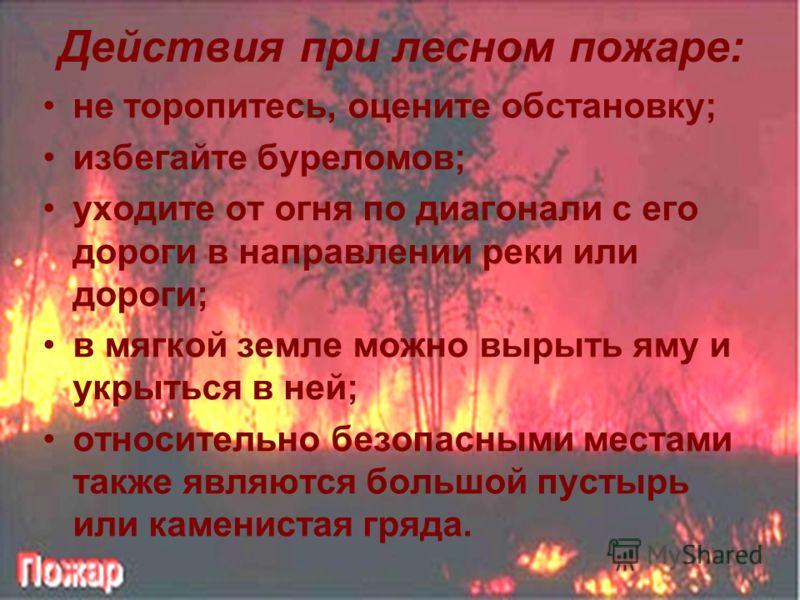 Действия при лесном пожаре: не торопитесь, оцените обстановку; избегайте буреломов; уходите от огня по диагонали с его дороги в направлении реки или дороги; в мягкой земле можно вырыть яму и укрыться в ней; относительно безопасными местами также явля