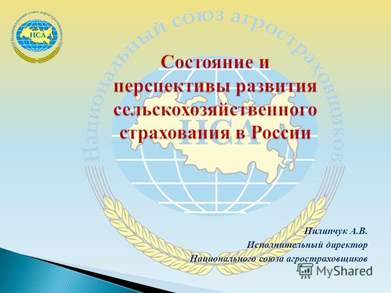 Пилипчук А.В. Исполнительный директор Национального союза агростраховщиков