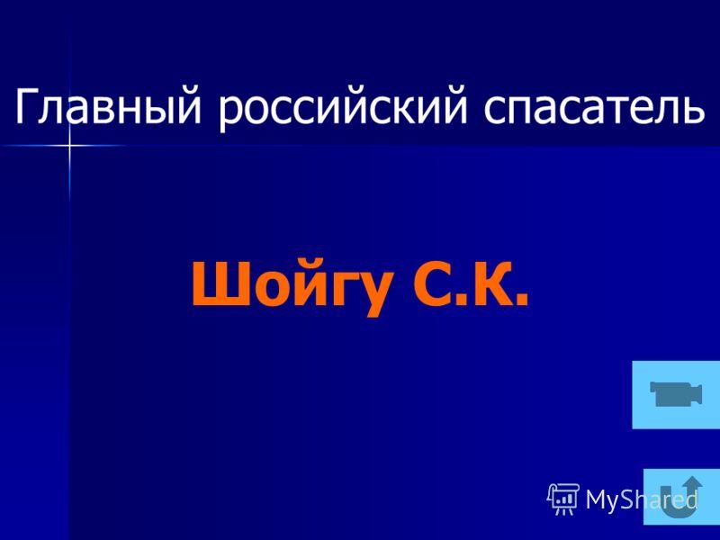 Главный российский спасатель Шойгу С.К.