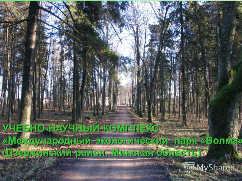 УЧЕБНО-НАУЧНЫЙ КОМПЛЕКС «Международный экологический парк «Волма»» (Дзержинский район, Минская область)