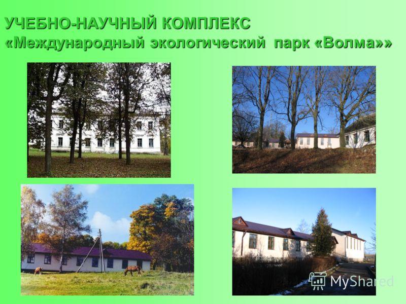 УЧЕБНО-НАУЧНЫЙ КОМПЛЕКС «Международный экологический парк «Волма»»