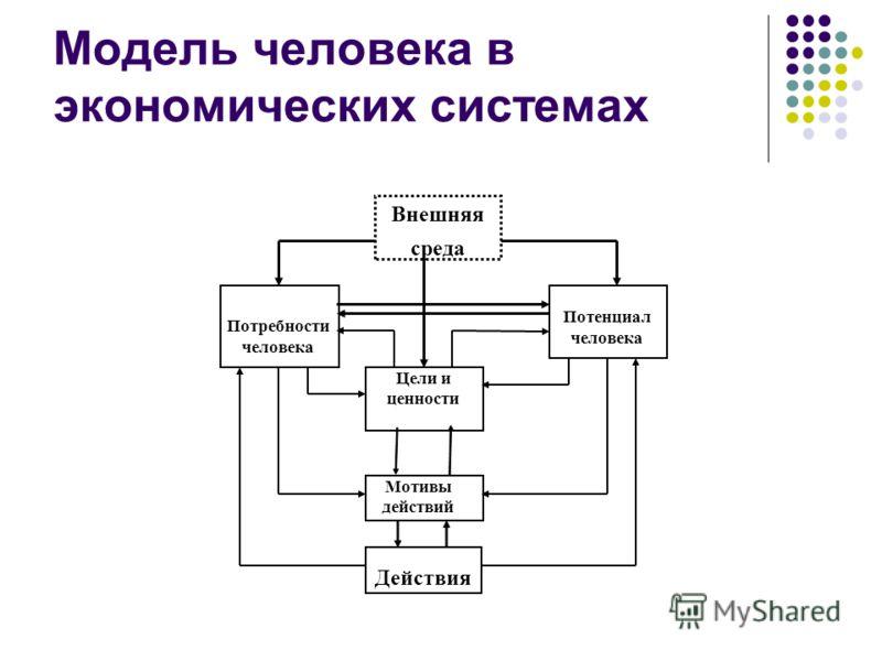 Модель человека в экономических системах Цели и ценности Мотивы действий Потребности человека Потенциал человека Действия Внешняя среда