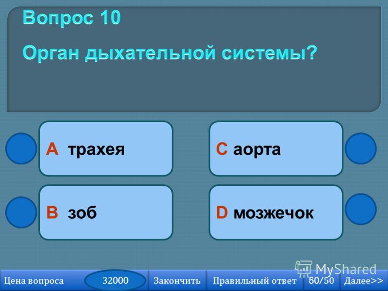 А трахея В зобD мозжечок С аорта Далее >> Далее >> 50/50 Правильный ответ Цена вопроса 32000 Закончить