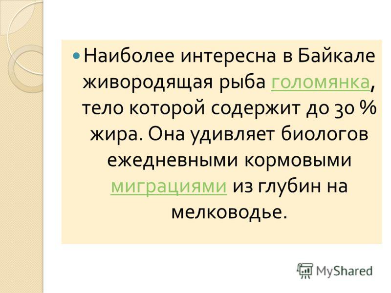 Наиболее интересна в Байкале живородящая рыба голомянка, тело которой содержит до 30 % жира. Она удивляет биологов ежедневными кормовыми миграциями из глубин на мелководье. голомянка миграциями